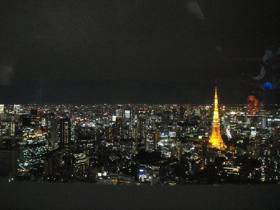 Mori Art Museum : Tokyo night veiw from sky deck floor