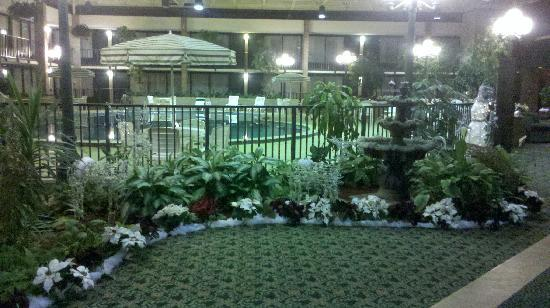 Quality Inn Conference Center: The Christmas Decor was wonderful