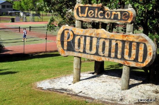 Pauanui Pines Motor Lodge: Lieu