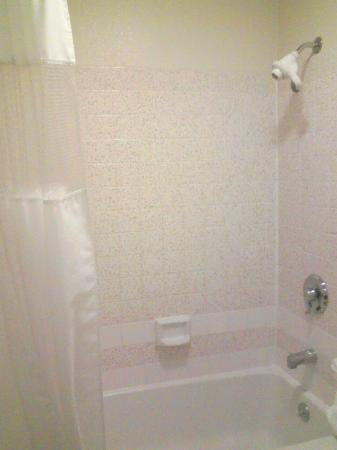 Quality Inn Oakland: shower/bath