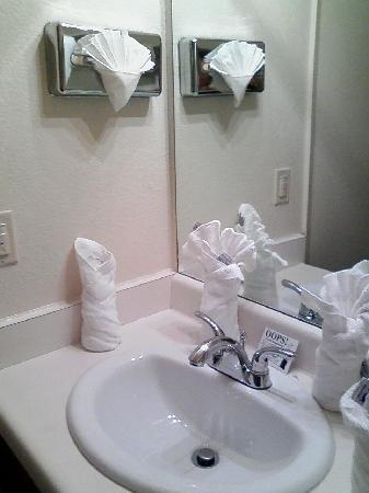 Quality Inn Oakland: sink/vanity area