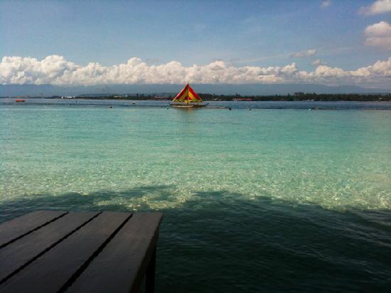 Hotel Tropika Davao : Wish you were here!