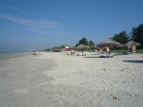 Taj Exotica Resort & Spa Goa: Beach view down to the beach shack