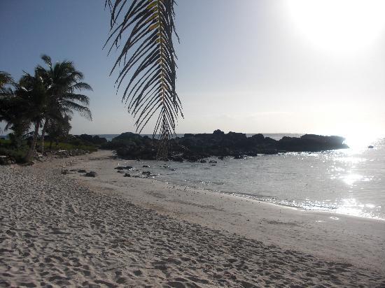 Maya Tulum Resort : the beach you will be staying on