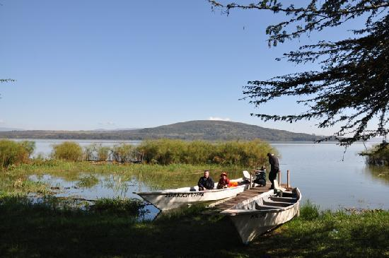 Naivasha, Kenia: at the peer