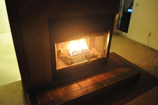 Cold Spring Resort: fireplace, no wood, just duraflame logs allowed
