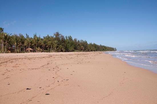 The St. Regis Bahia Beach Resort: Large beautiful private beach - pic taken Sunday 11a!