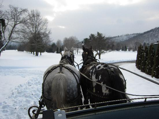 The Greenbrier: sleigh ride