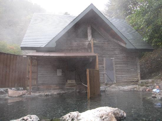 Imakane-cho, Japón: 左手が女性・右手が男性の、内風呂と洗い場があります。その奥が脱衣所です。