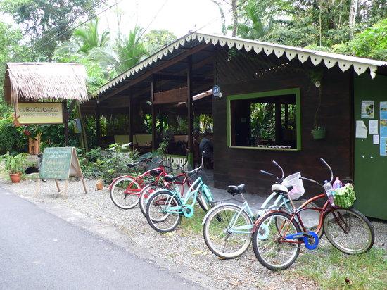 La Botanica Organica Cafe & Macrobiotica