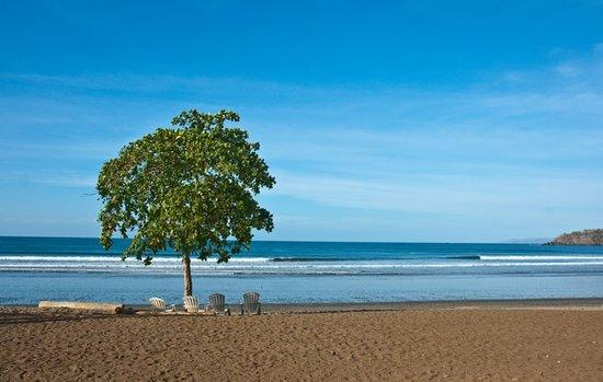 هوتل إل سيتيو: El Sitio Beach