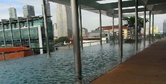 Morrissey Hotel Residences: pool