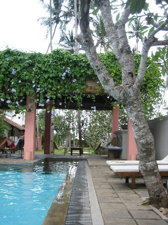 Casa Siena: Pool