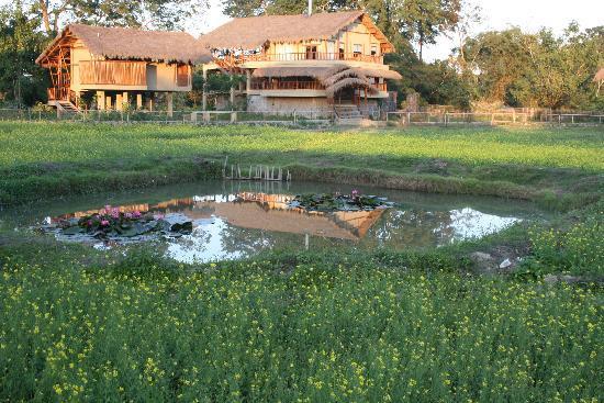 Diphlu River Lodge: beautiful view