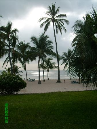 Sandies Coconut Village: Vista dal Coconut