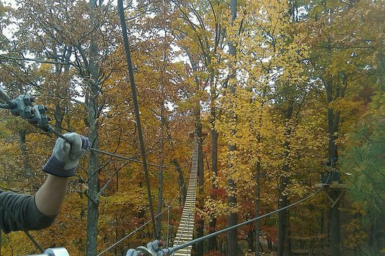 ‪Lake Lanier Canopy Tours‬