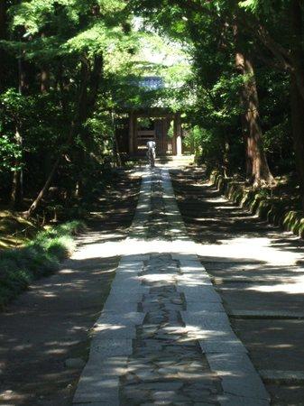 Jufukuji Temple: 山門を望む、この脇から山裾へといきます。