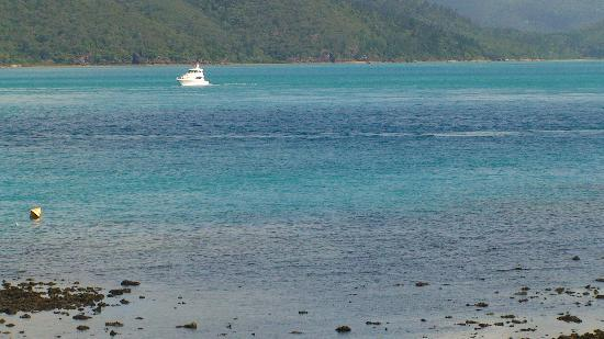 Hook Island, Australia: The Whitsunday Channel