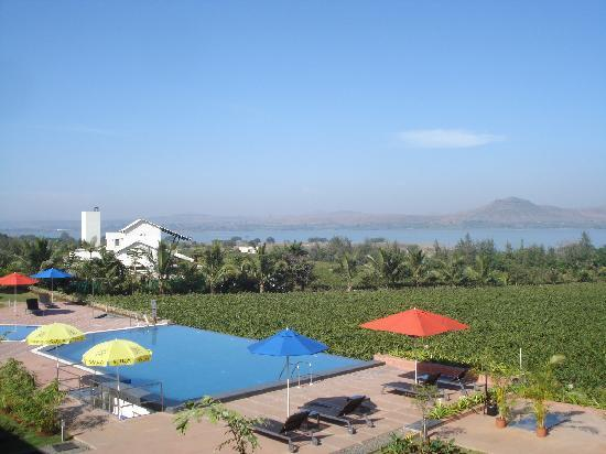 Sula Vineyards: View from the balcony