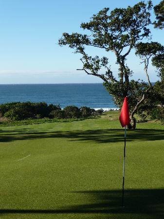 Blue Horizon Southbroom: golf heaven