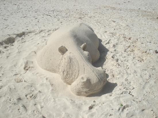 Diani Sea Resort: sand hippo