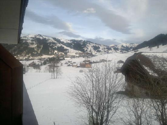 Hotel Le Grand Chalet : Room balcony view