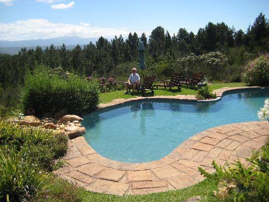 Fynbos Ridge Country House & Cottages: The swimming pool in its beautiful setting