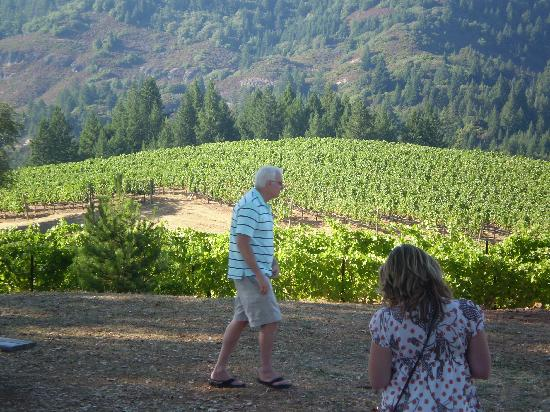 Holme Grown Tours : Pride Winery