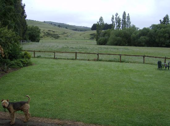 Mingary Farmstay B&B Accommodation: View from the back porch