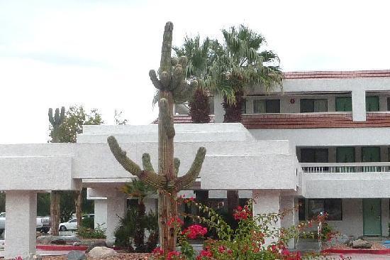 Motel 6 Palm Springs Downtown: Palm Springs Motel 6 au 660 Palm Canyon