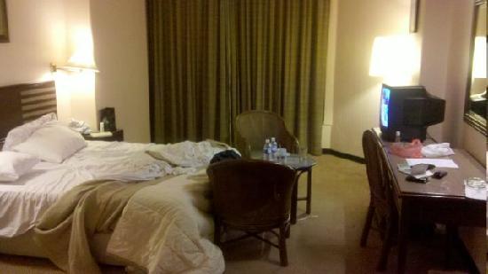 Hotel Selesa Johor Bahru: Room