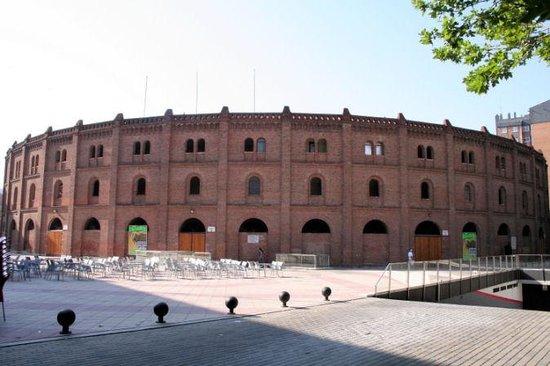 Museo Del Toro