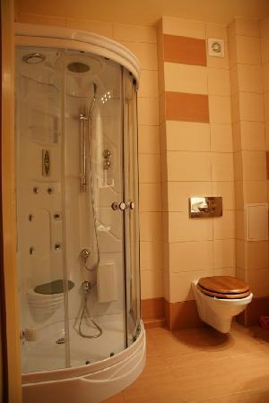Hotels Lublin: Bathroom Shower