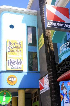 Harolds Mansion: Harolds