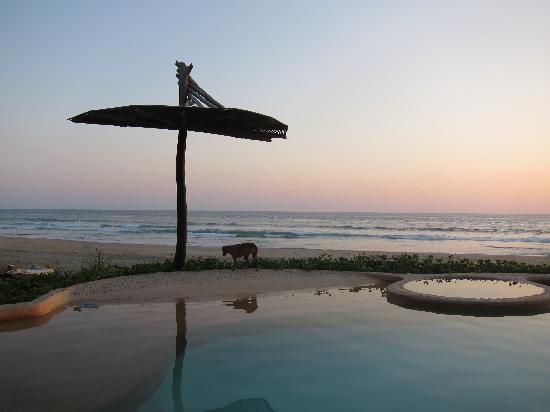 Playa Viva: sunset reflected in the pool
