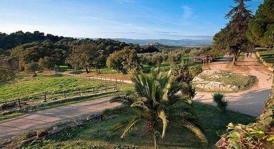 Azienda Agrituristica Le Macchie Alte : Panorama