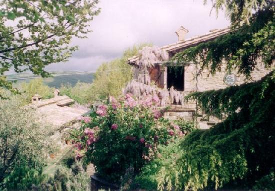 Agriturismo Le Cinciallegre: un angolo di paradiso