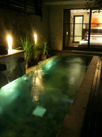 Gending Kedis Villas & Spa Estate: お部屋のプール