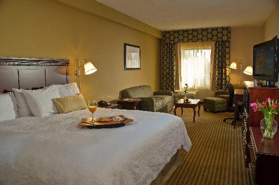 Hampton Inn Palm Beach Gardens: King Deluxe Room