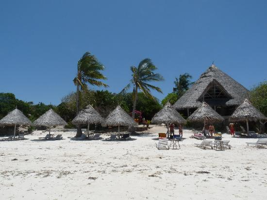 Flamingo Villas Club: spiaggia di mayungu