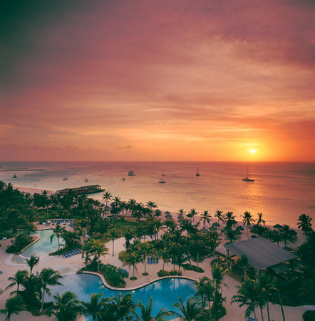 Hilton Aruba Caribbean Resort & Casino: Largest expanse of beach on Aruba's famed Palm Beach