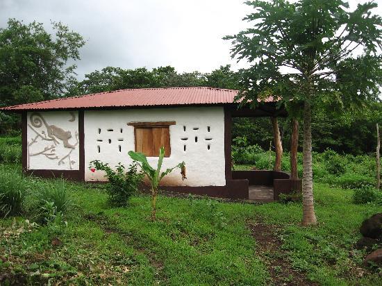 Finca Mystica: side view of the monkey cob cabana