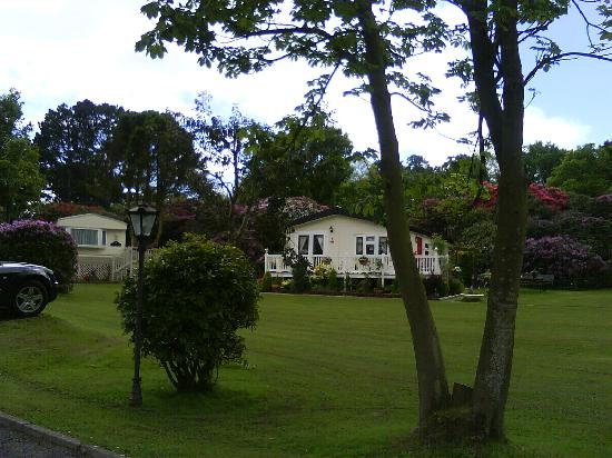 Lyons Woodlands Hall Hotel: Park views