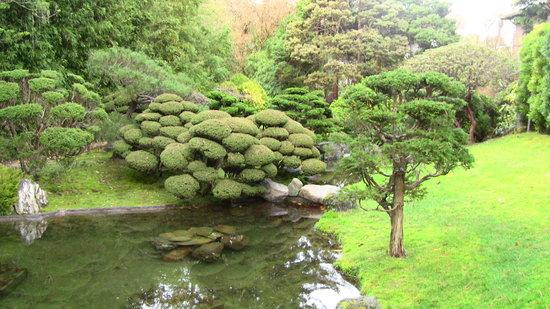 Japanese Tea Garden: garden_3