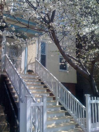Lincoln Park Guest House: Spring