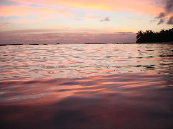 Sheraton Maldives Full Moon Resort & Spa : im Hintergrund - die Wellenbrecher