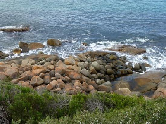 Albany, Australia: The rugged coastline
