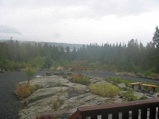 Ecoscape Cabins: View from our deck