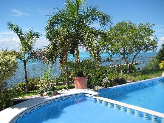 Hotel La Joya: View of the pool and ocean beyond