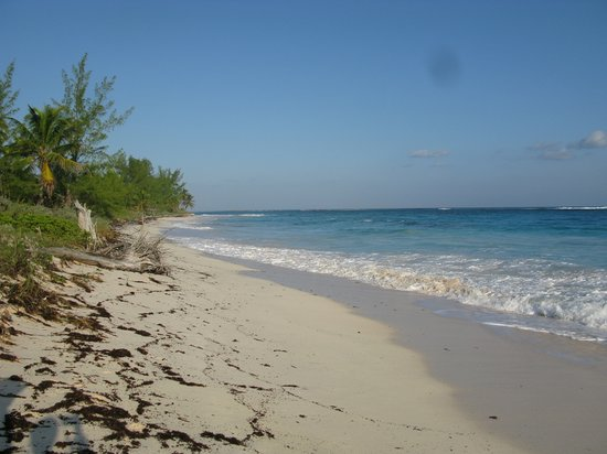 Eleuthera : Beautiful Beach